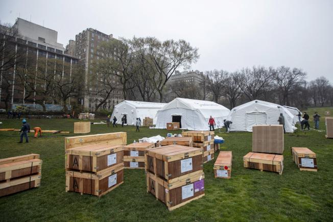 工作人員齊力合作,在中央公園搭建野戰醫院。美聯社