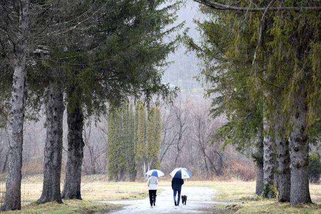 30日,麻州一公園內,兩人在遛狗。(美聯社)