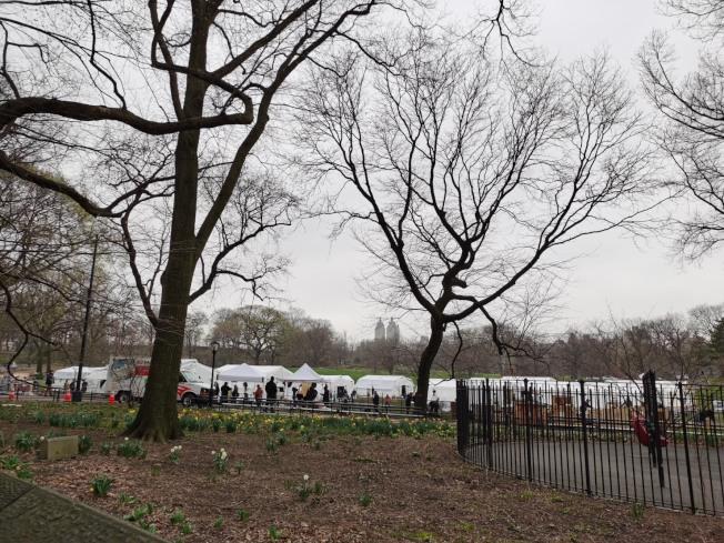 中央公園東草坪建68床位臨時醫療點。記者張晨/攝影