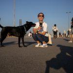 全球首例!感染新冠的寵物狗 已呈弱陽性