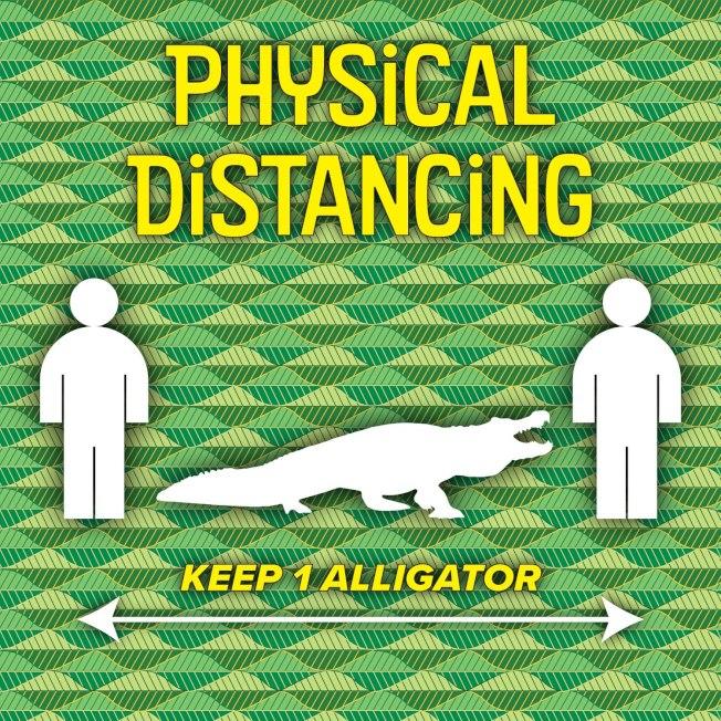 佛羅里達州里昂郡,要求民眾保持「一條鱷魚長度」的社交距離。