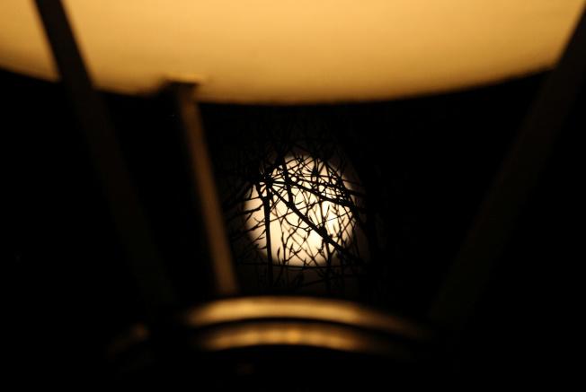 在英國倫敦泰唔士河防洪閘公園的超級月亮,也稱粉紅月亮(Pink Moon)。路透