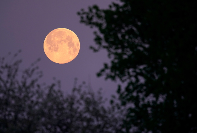 在德國斯拜爾(Speyer)紫色的天空與超級月亮療癒了大家抗疫疲憊的心。歐新社