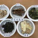 醫師私房飲品分享 靈芝元氣茶提升免疫力