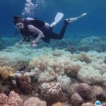 拯救大堡礁!澳洲科學家「點亮」雲層降溫