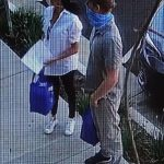 梅根、哈利現身洛城 圍巾當口罩遛狗