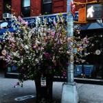花藝師紐約街頭「花閃」 感謝醫護人員