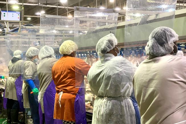 多家肉食加工廠工人染患新冠病毒,無法上工,導致肉食生產鏈將會中斷。圖為喬治亞州的一家泰森食品公司的作業工人。(美聯社)