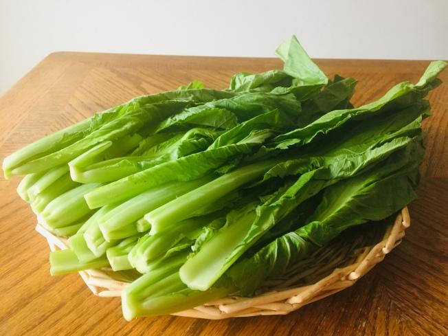 鮮碧翠綠的小芥菜