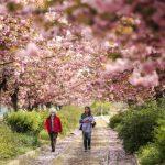 母親節出遊「圖方便」 新州公園嚴罰「罐裝」尿液