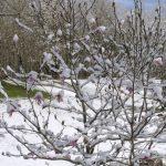 低溫像3月!東部數十城創5月最冷紀錄