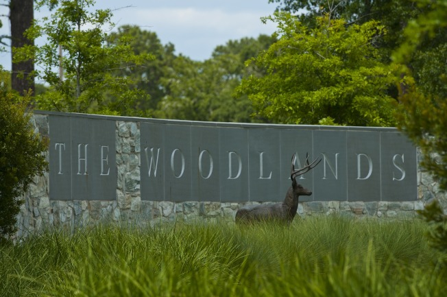 伍德蘭茲The Woodlands顧名思義是「林木茂盛之地」。(伍德蘭茲臉書)