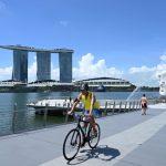 新加坡6月2日起3階段恢復活動
