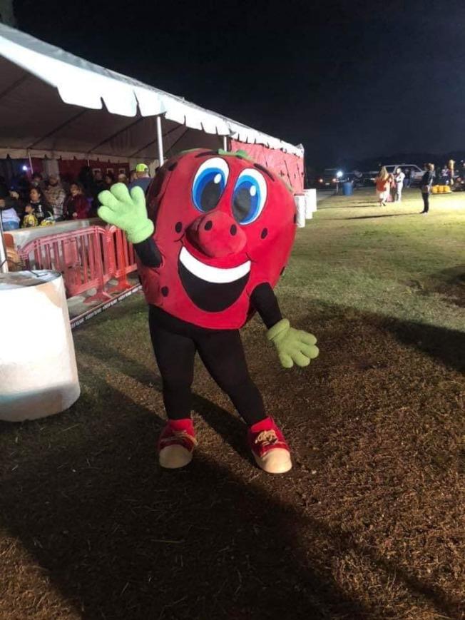巴沙迪那草莓節吉祥物代言輝煌的「世界草莓之都」。(草莓節官網臉書)