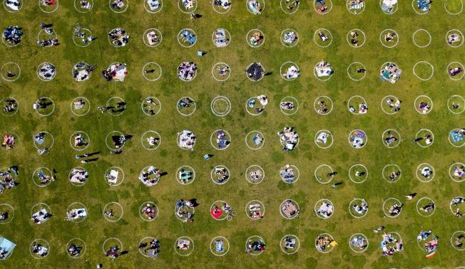 加州一處公園的草地上,畫滿了維持社交距離的白圓圈,鼓勵民眾安全的在戶外活動。(Getty Images)