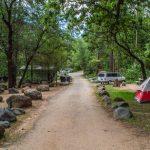 新州野營地重開 室外25人以下聚會准了