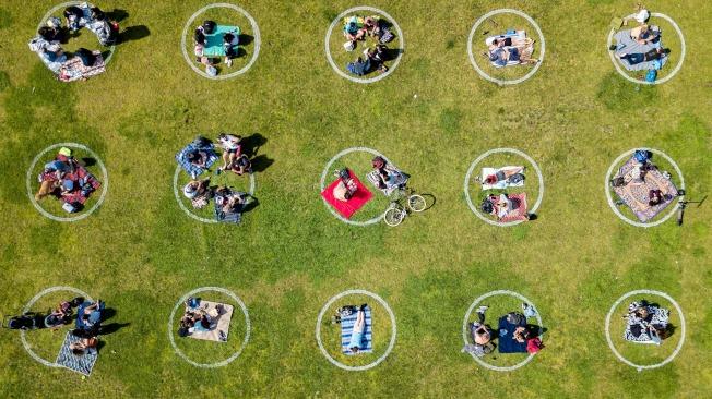 加州一處公園的草地上,畫滿了維社交距離的白圓圈,鼓勵民眾安全的在戶外活動。(Getty Images)