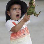 圖輯/動物園的可愛動物:好久沒看到人類了