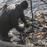 雙語 | 漁網裝LED燈 可減少過度捕撈