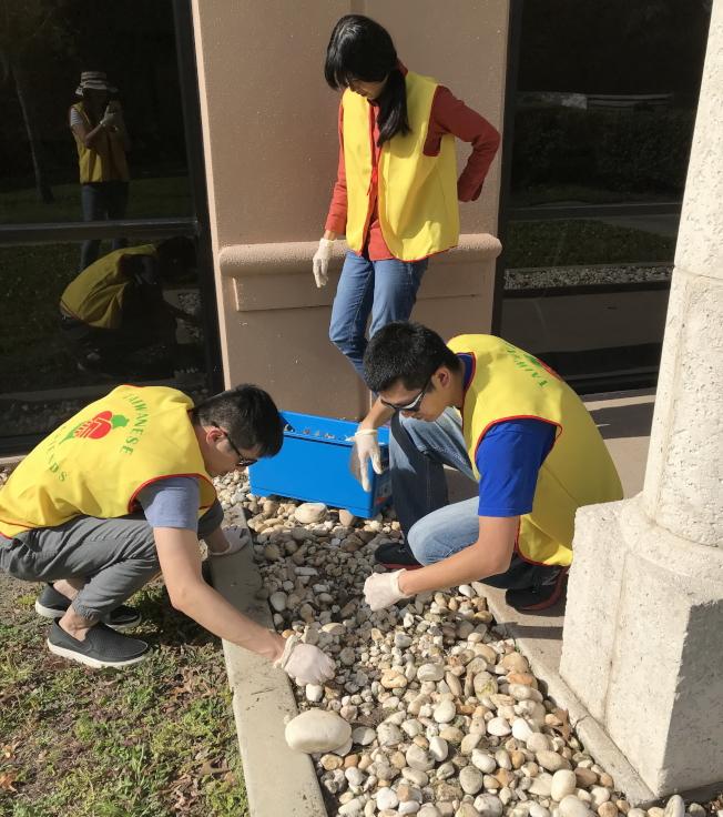 認養公園,台灣之友會員做維修工作之一。(簡雅嵐提供)