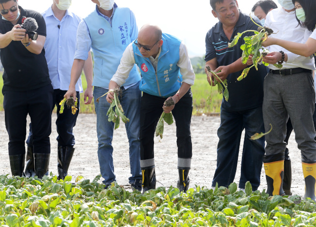罷韓倒數,高雄市長韓國瑜(中)30日擺低姿態,彎腰到滿是泥濘的田裡視察農損。(記者劉學聖/攝影)