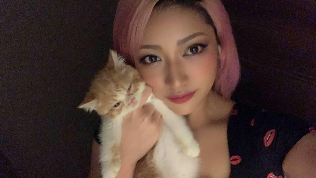 木村花先前連發貓咪照片都會被酸民嘲笑。取材自推特