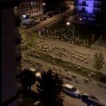 解封前夕 成千上萬綿羊攻占城市 壯觀景象民眾看傻眼