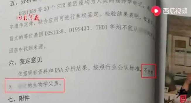 陳男指親子鑑定報告顯示,他與5歲的兒子沒有血緣關係。(視頻截圖)