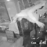 75萬元商品遭洗劫一空!青少年砸搶曼哈頓皮草店