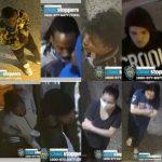 8人砸搶紐約華埠轄區牛仔店 盜搶貨品15萬