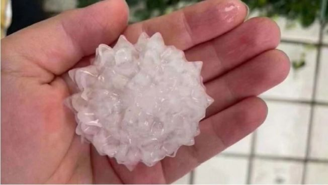 北京26日下冰雹,網友發現形狀竟似「新冠肺炎病毒」。 (取材自Twitter)