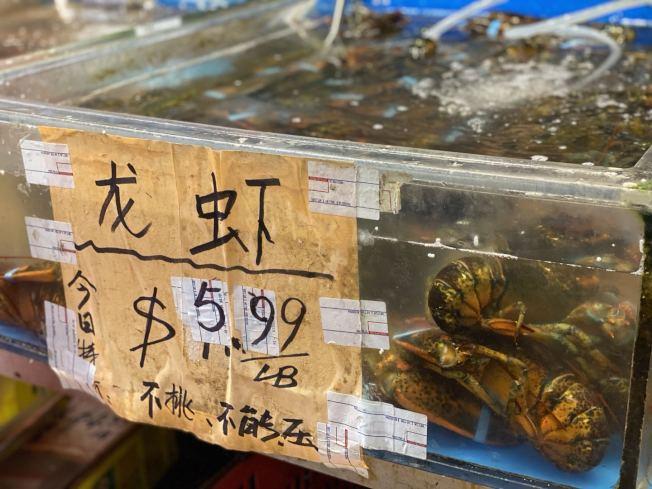紐約市的華人超市紛紛推出海鮮特價,龍蝦每磅價格只售5.99元。(記者牟蘭/攝影)