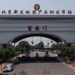 北京逾3成確診病例 來自新發地同一層樓