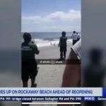 海灘開放在即 皇后區海灘驚現受傷鯊魚