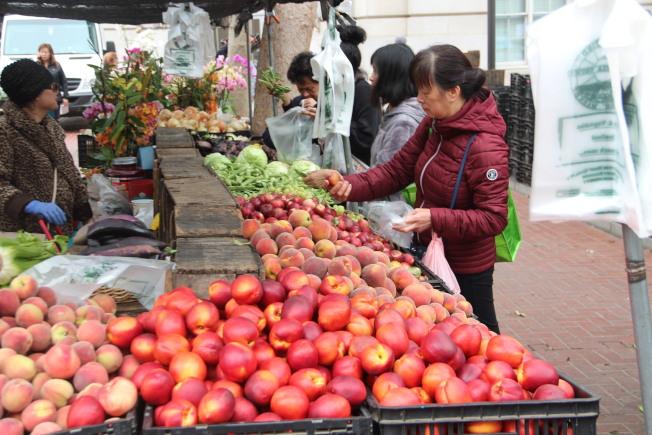 日落區的農民市場7月5日開幕,地址是位於37th大道上,在Ortega及Pacheco街之間。(本報檔案照片)