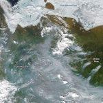 北極快速暖化 永凍土融化…全球無一倖免!