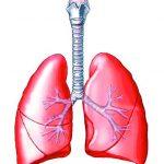 治療肺腺癌「超前部署」可延長存活期