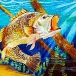 国家鱼类艺术大赛 刘彦博第三名