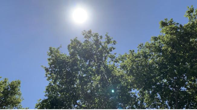 內陸本周末將迎來破百度高溫。(本報檔案照)