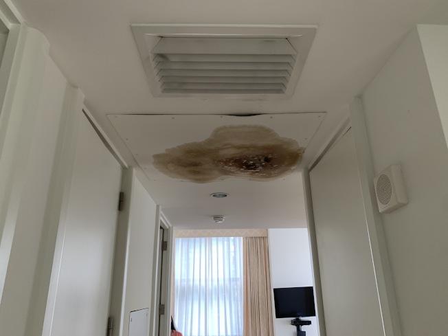陳杏梅購買的公寓房頂有漏水問題,且已經發霉。(陳杏梅提供)