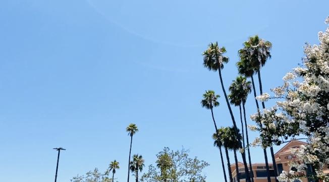 南加州熱浪來襲,本周末迎來破百度高溫。(記者謝雨珊/攝影)