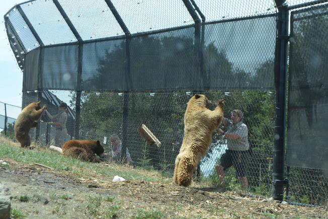 關閉近4個月的屋崙動物園,將在7月底重開。(記者劉先進/攝影)