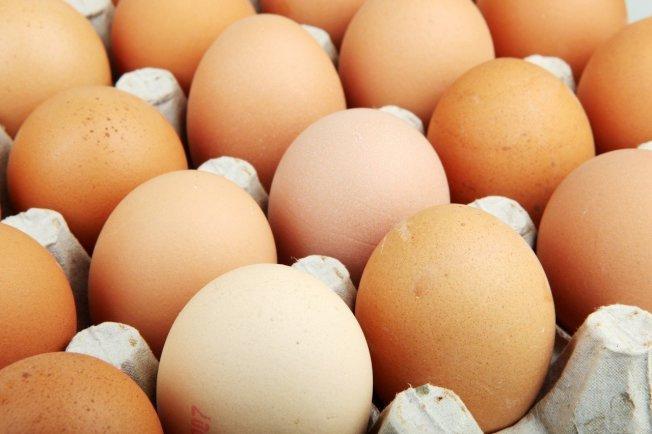 雞蛋。 圖/ingimage