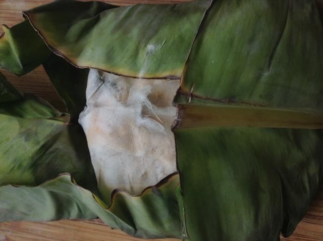 4.一般經過3天左右的時間,包裹在裡面的豆腐塊就會發酵,長出一層灰白色的絨毛。