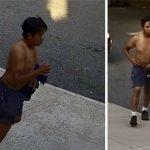 皇后區公園內性侵運動女子 嫌犯被捕