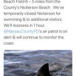 長島南岸海灘28日又出現鯊魚 緊急關閉水域