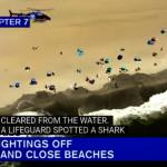 長島納蘇郡連續三天出現鯊魚 29日再度關閉沙灘