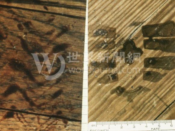 凶案現場發現了兩個疑似嫌犯的腳印。(李昌鈺提供)