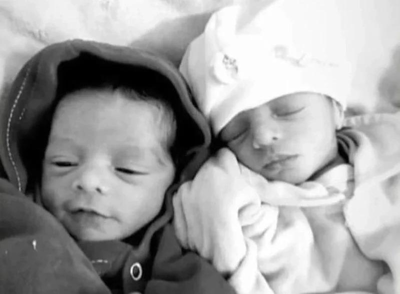 26天大的雙胞胎女嬰慘遭家中飼養的拉布拉多咬死。取材自每日郵報