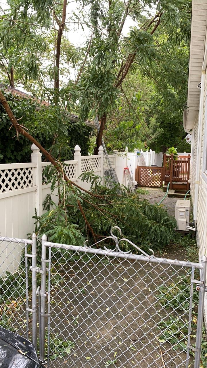 因熱帶風暴的強風影響,一戶皇后區貝賽居民家中4日下午樹木被吹倒。(吳Peter提供)